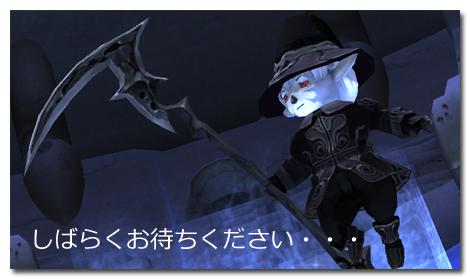 20100204-01.jpg